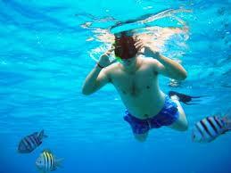 """man snorkeling under water"""